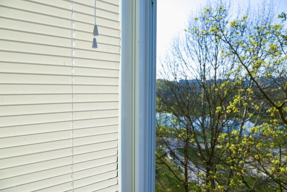 bigstock-Window-Blinds-64330591.jpg
