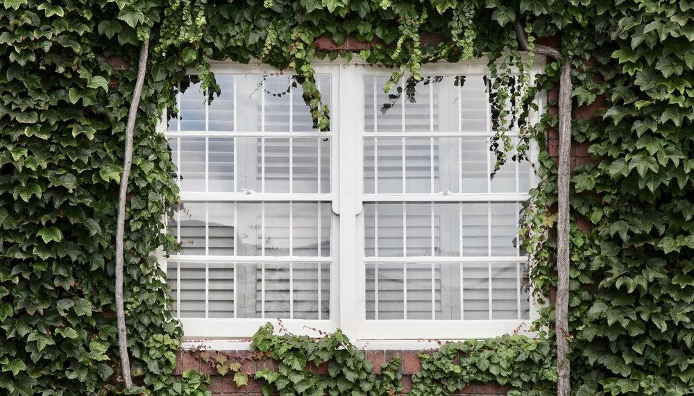 SHUTTERS - CLICK HERE
