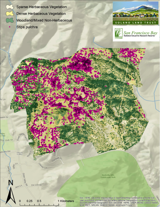 Two examples of imagery analysis and classification. Habitat basemap produced with NDVI data and aerial imagery. Overlay of native grassland points detected through image differencing: time series used to extract native grassland stands (Stipa pulchra).