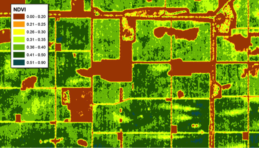 NDVI provides a visual display of the vegetative cover on your entire ranch with numbers to help you estimate your actual available forage for the season. You can even track invasive species.