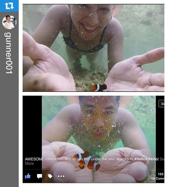 #Repost @gunner001 with @repostapp.・・・#igotskillz #findingnemo #nemo #clownfish #gopro #helloelnido #elnido #wanderlust #palawan #philippines 🇵🇭🐠👌