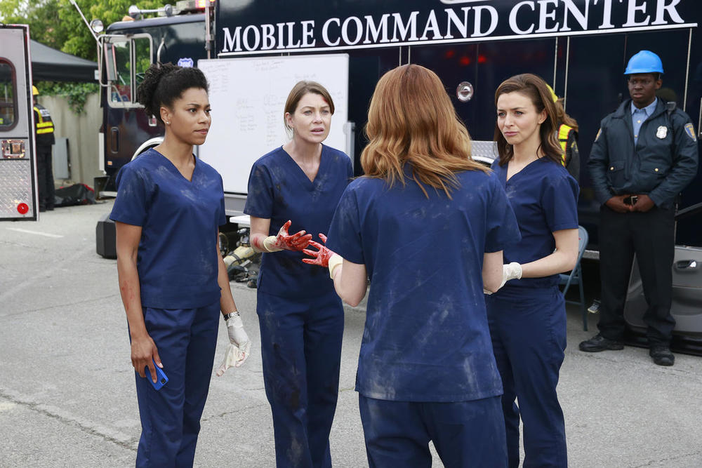 GREYS ANOTOMY (TV series)