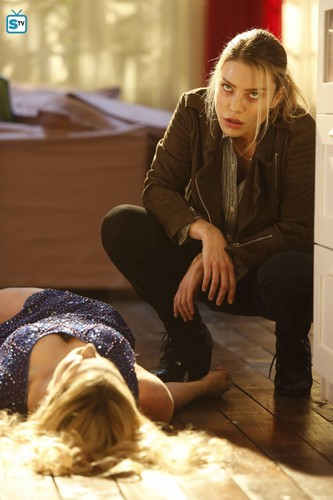 Det. Chloe Decker discovers a dead body