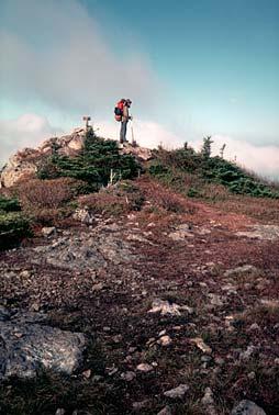 Mic on mountain top