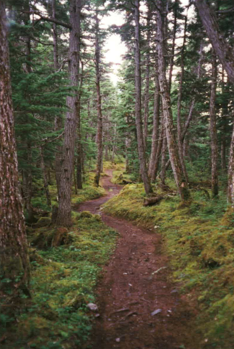 TRAIL TO CRESCENT LAKE