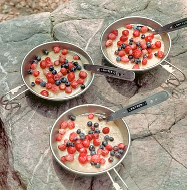 RED, WHITE, AND BLUEBERRY PUDDING