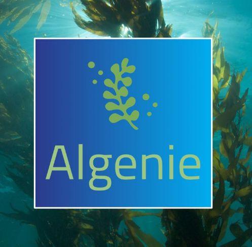 Algenie