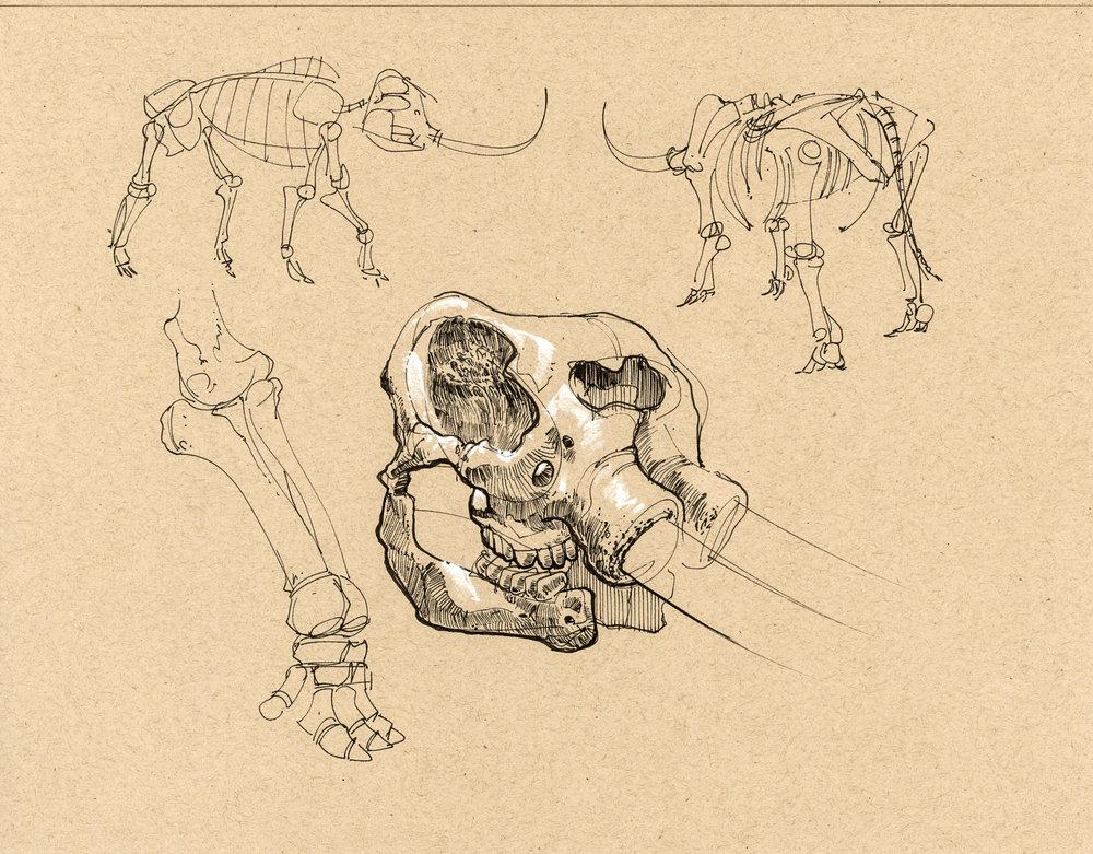 Viscom 2 028 Bones Mammoth.jpg