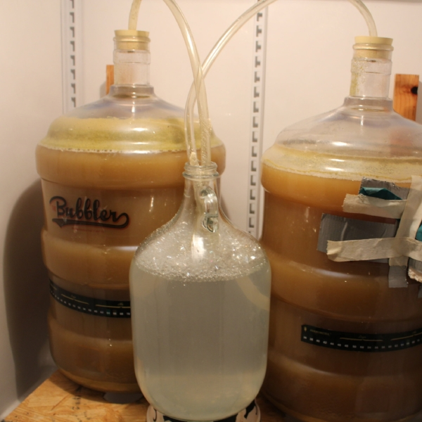 Right before adding the primary fermentation hops, the krausen had already fallend quite a bit by day 3.