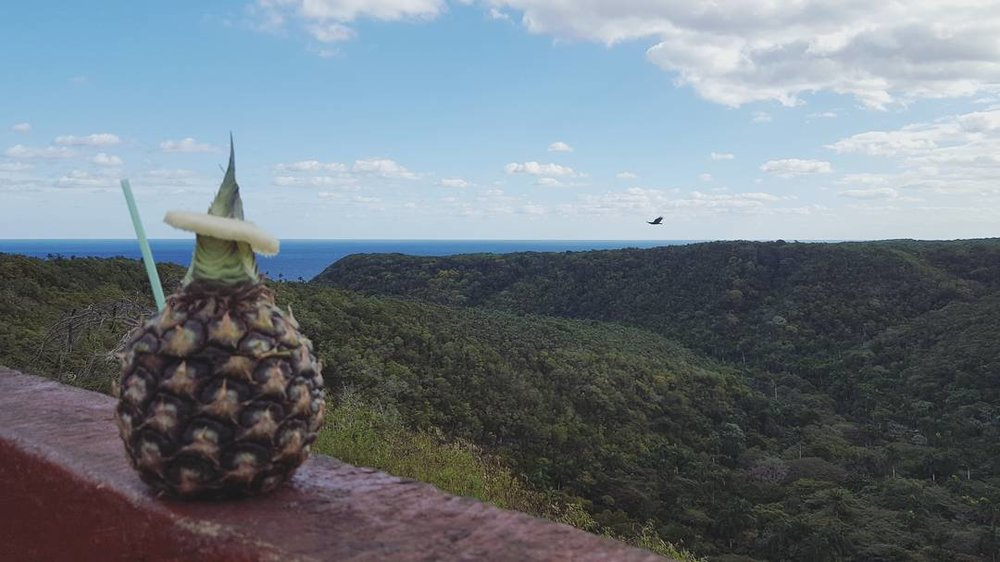 Pina Colada in a pineapple at Bacunayagua Bridge