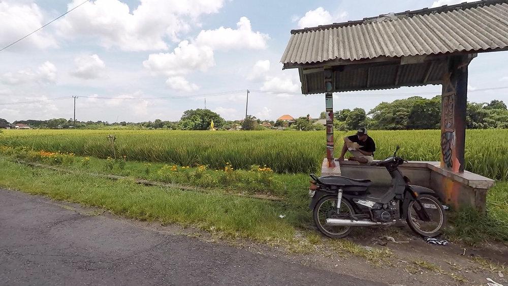 Canggu Scoopy Ride 7.jpg