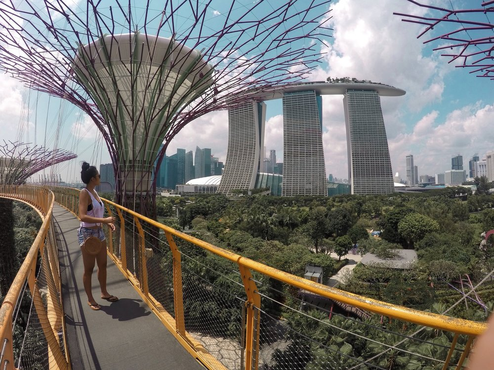 Walking along the sky bridge at the Supertrees in Singapore
