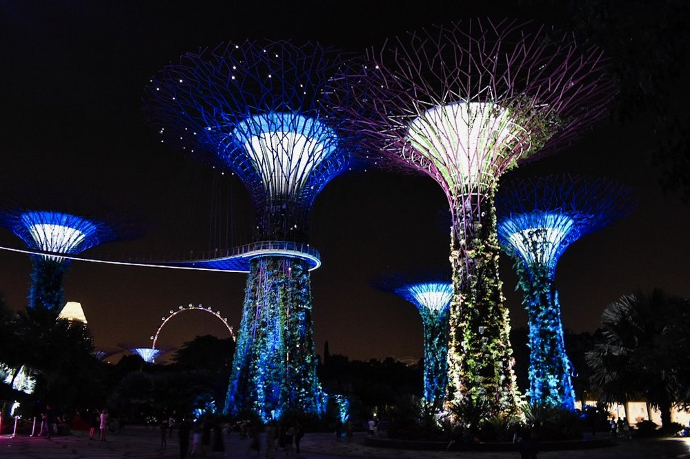 The Supertrees at night