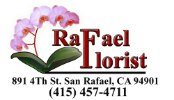 Rafael-florist-logo.jpg