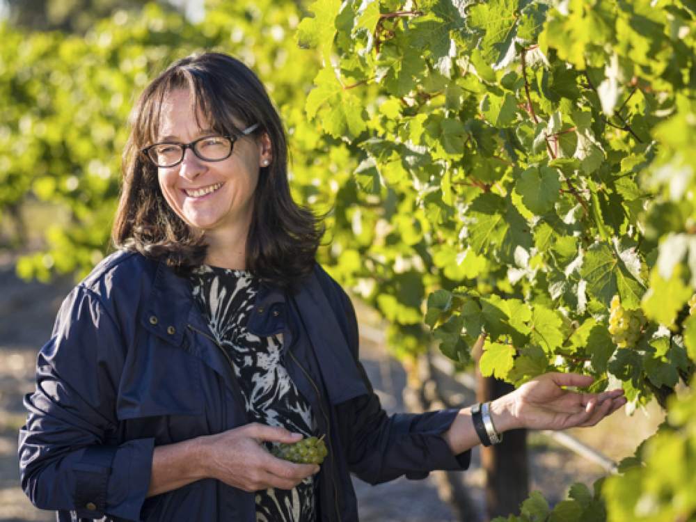 Louisa Rose - Yalumba Winemaker