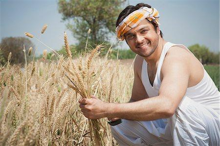 Immigrant wheat farmers have a couple of reasons to be happy about the success of Labour.