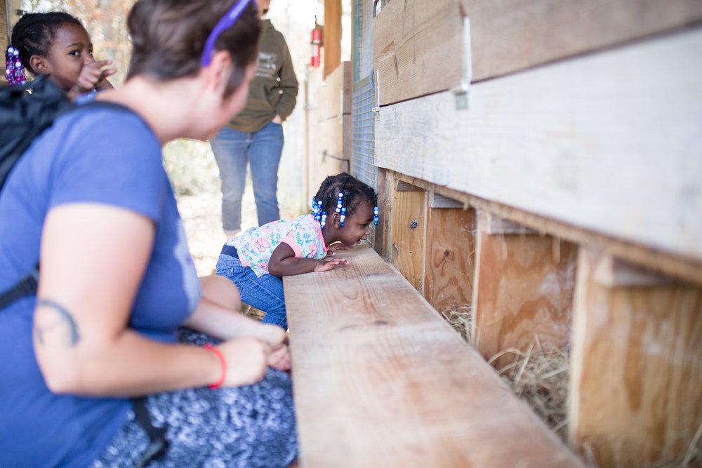 mcdowell farm school-9.jpg