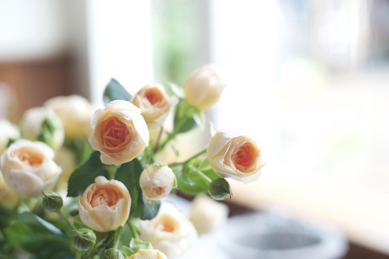 Blog - Old Frond Floral Co. | Huntsville, Alabama Wedding Florist ...