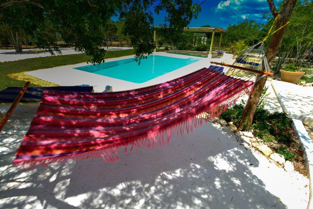 Hammock & Pool.jpg