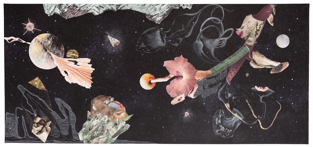 Naturaleza Cosmética   Collage, lápiz, tinta y hojilla sobre impresión giclée 1.5 x 3.2 mt