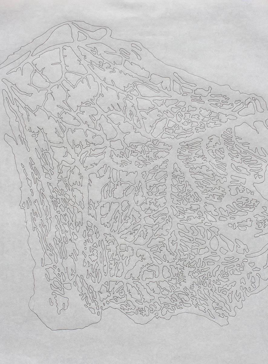 Dibujo de llenos y vacíos del redaño.