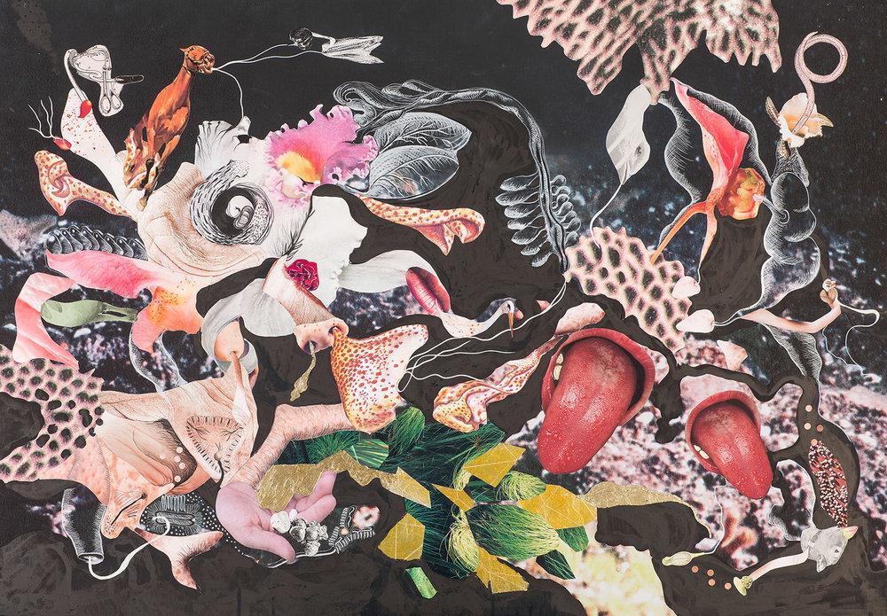 Naturaleza Cosmética Collage, grafito, hojilla y tinta sobre impresión giclée 90 x 70 cm
