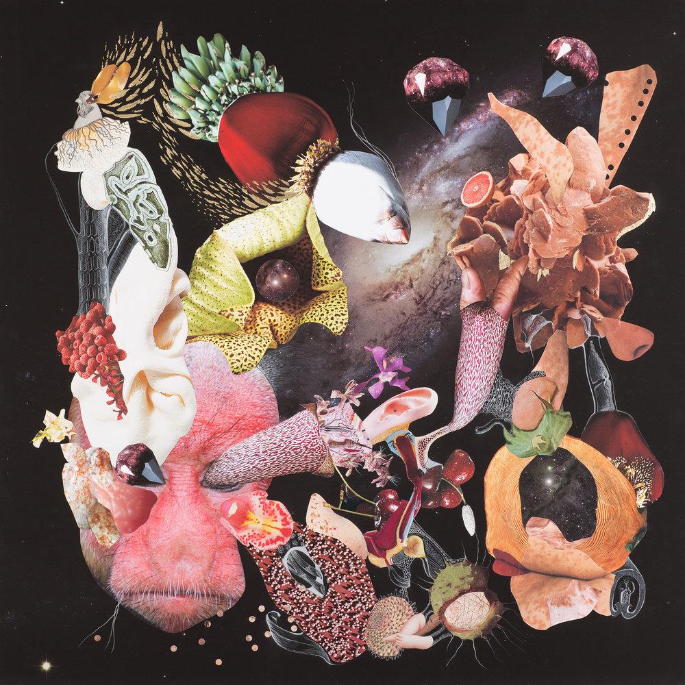 Naturaleza Cosmética Collage, lápiz y hojilla sobre impresión giclée 90 x 90 cm