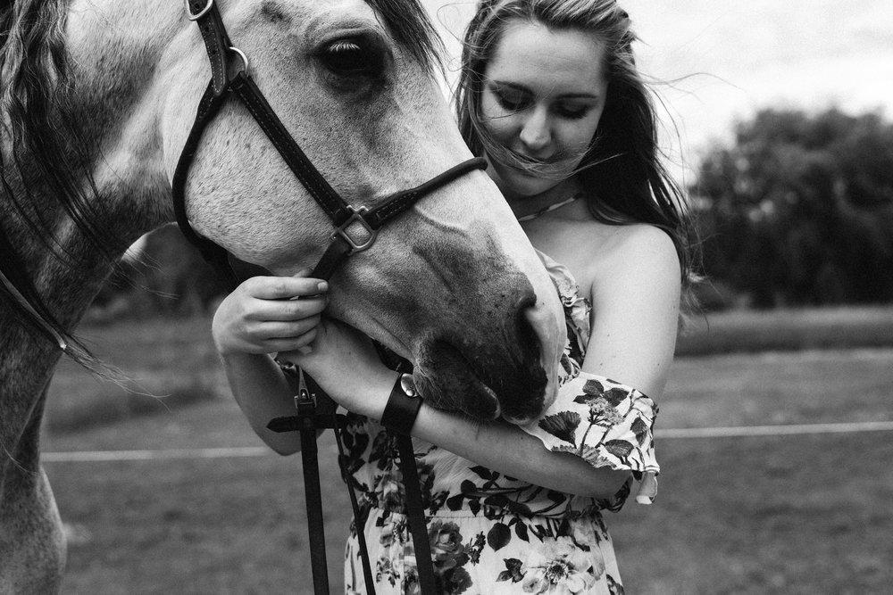 minnesota equine horse photographer24.jpg