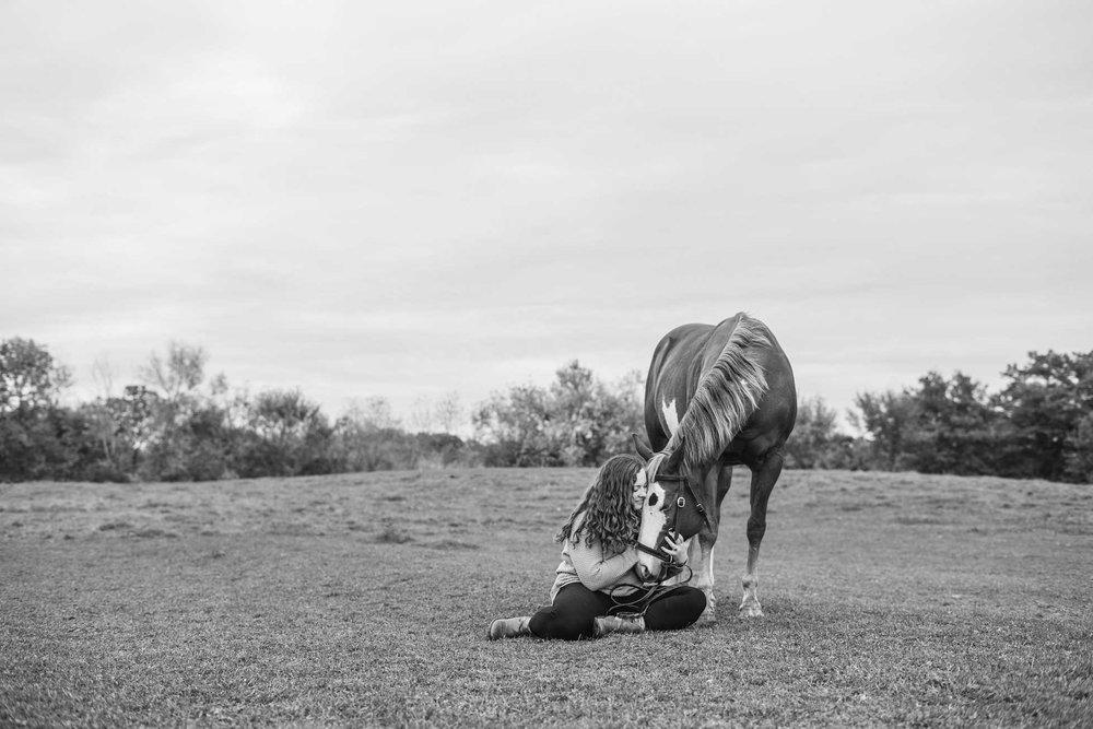 minnesota-horse-equine-photographer-20.jpg