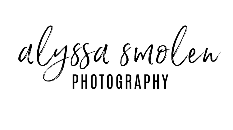 Minnesota Wedding & Equine Photographer Alyssa Smolen Photography