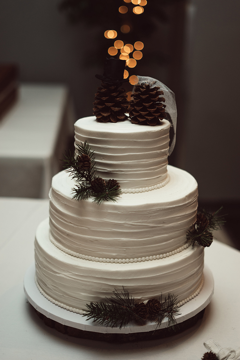 winter-wisconsin-wedding-westby-alyssa-smolen-photography (19).jpg