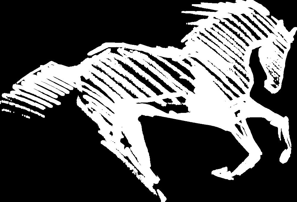 horses_001_7 copy.png