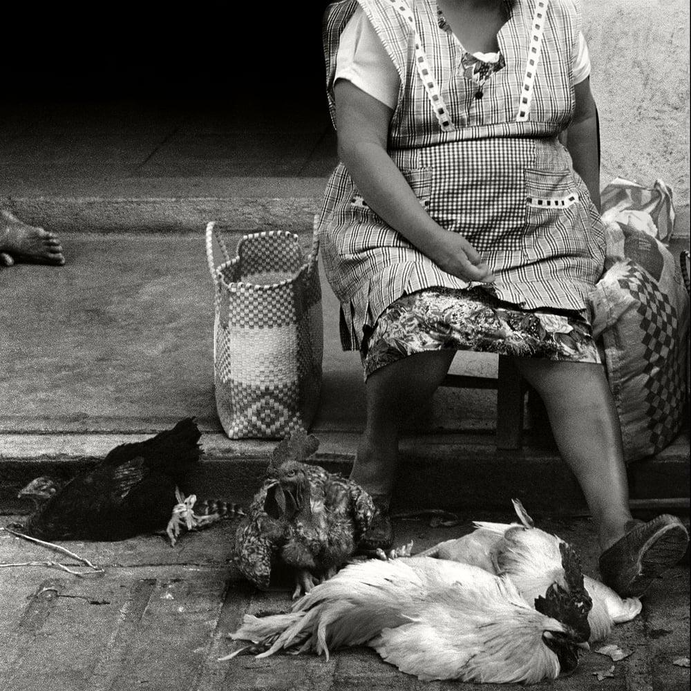 Oaxaca_14.jpg