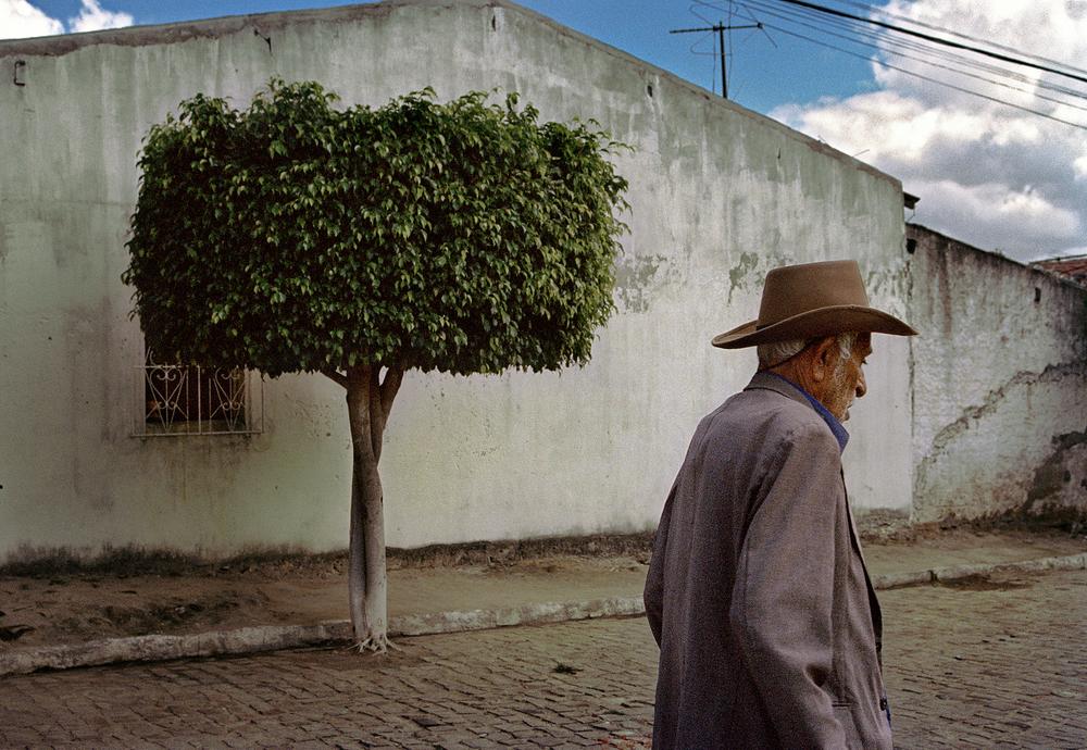 Brazil_17.jpg