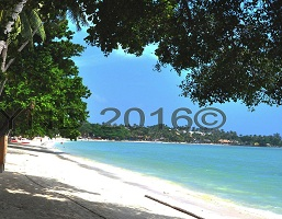 Koh Samui, Gulf of Thailand, tropical holiday destination, budget travellers, culture