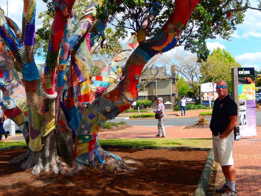 Yarnbomb Project woven tree, Rotorua, NZ