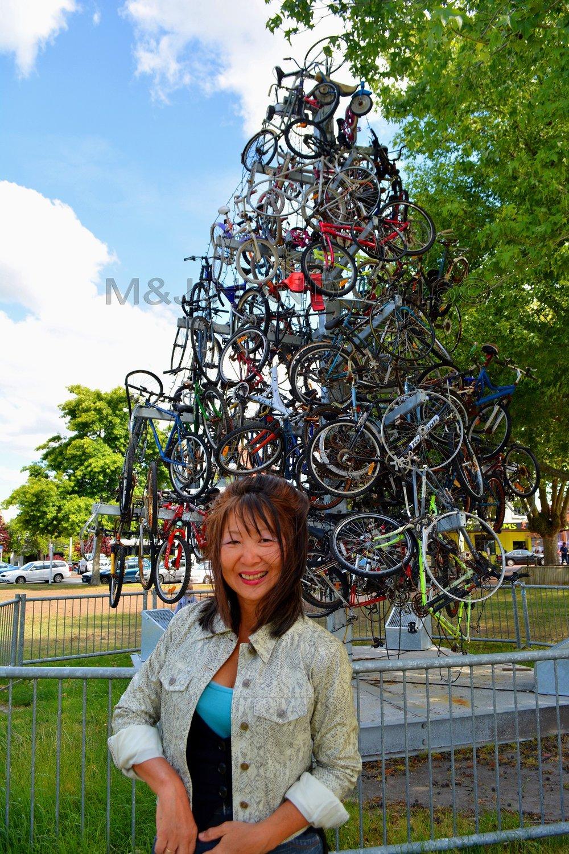 Bicycle Tree at the Arts Village, Rotorua, NZ