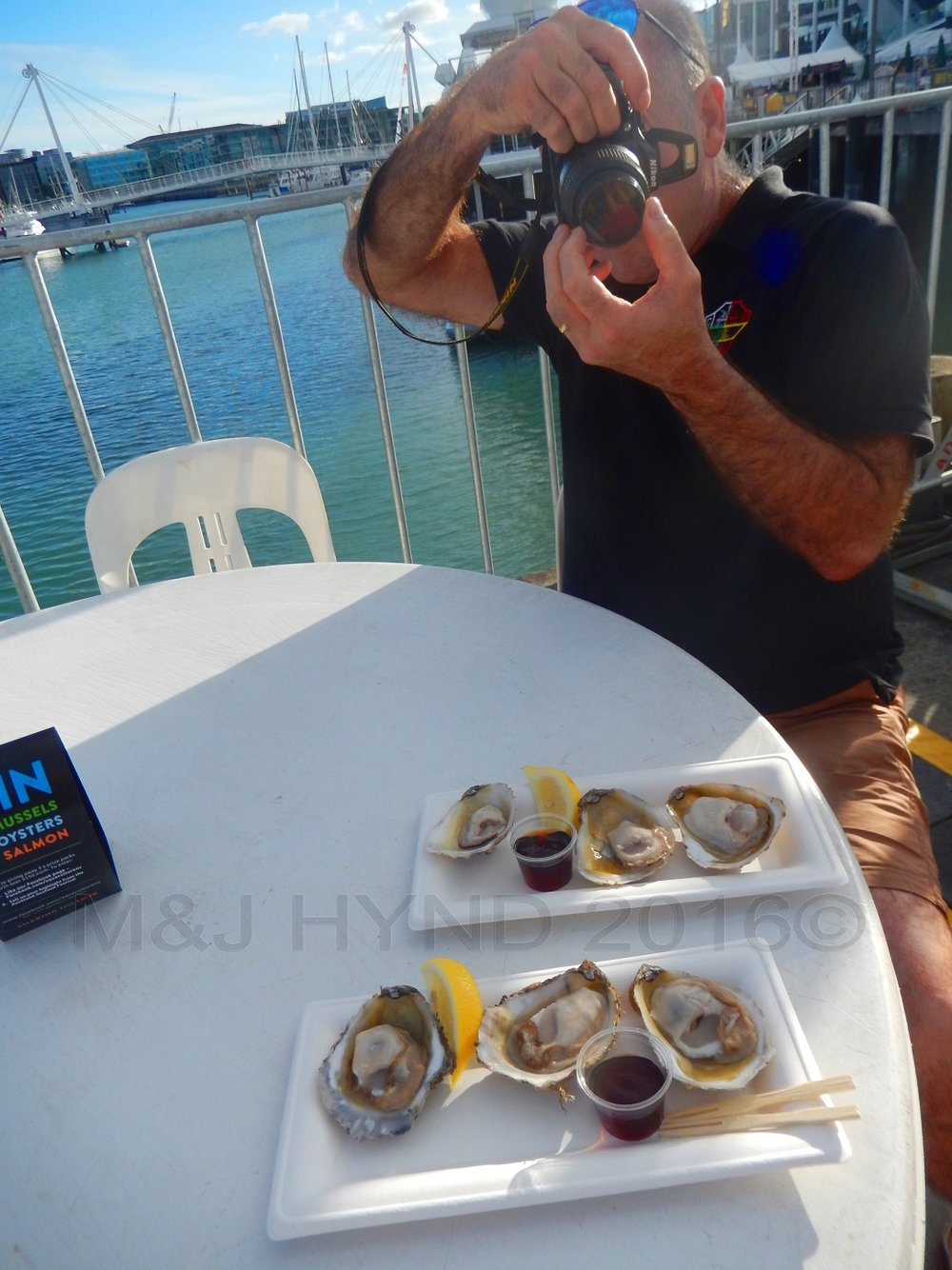 Oysters, Seafood Festival, Auckland, NZ
