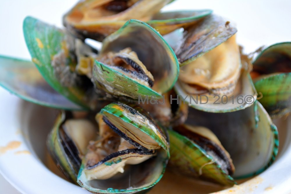 Steamed mussels, Seafood Festival, Auckland, NZ