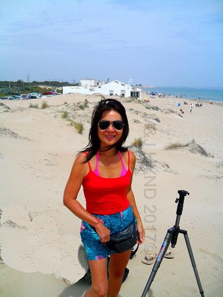 sand dune beach kiosk, cafes restaurants, La Marina, Elche, Spain