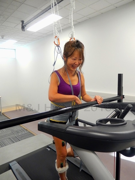 treadmill with harness