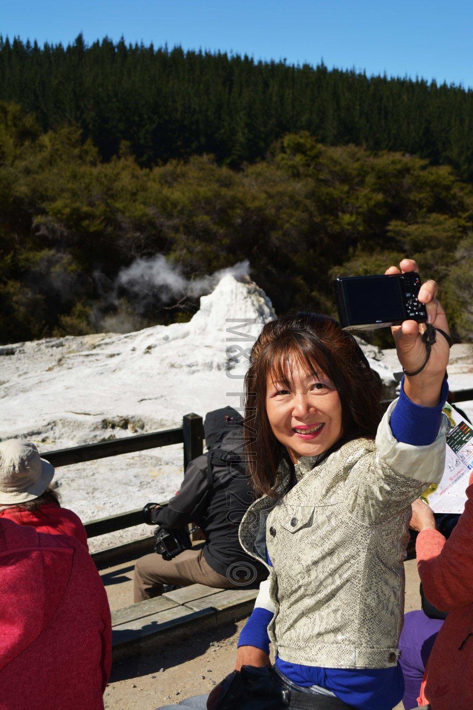 Lady Knox Geyser, Wai-o-tapu Thermal Wonderland, Rotorua, NZ