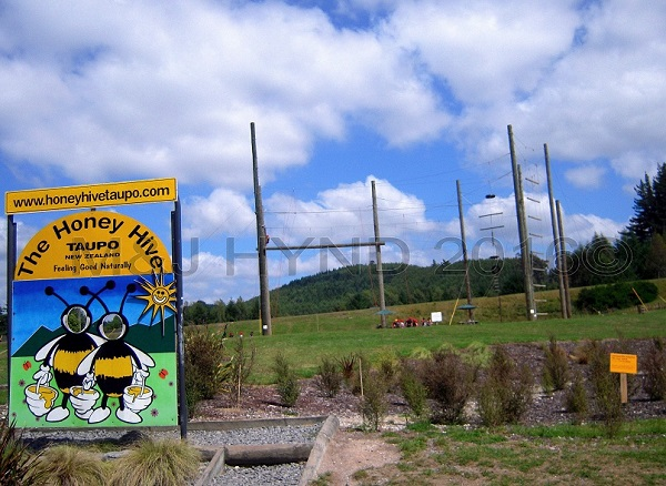 Honey Hive sign in front of Rock+Ropes, Taupo, NZ