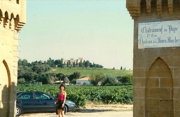 Chateauneuf du Pape verdant vineyards, Rhone, France