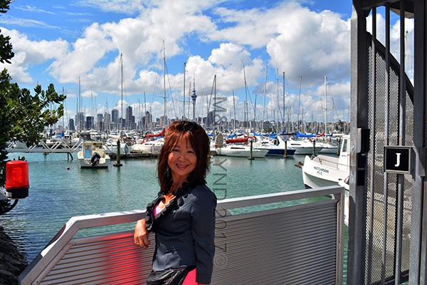 Westhaven marina, CBD, SkyTower, Auckland, NZ