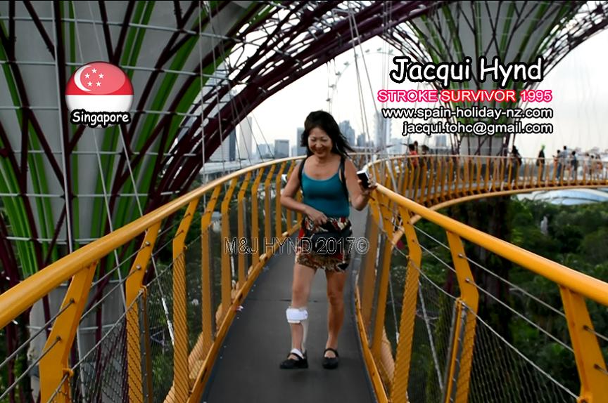 singapore: supertree grove