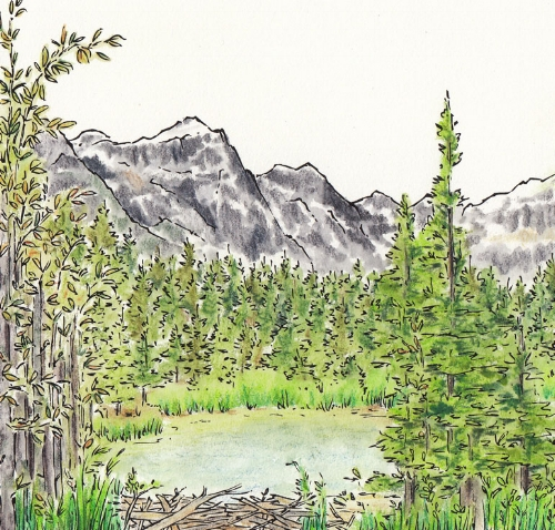 mountain sketch cropped.jpg