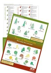 treeposter.jpg