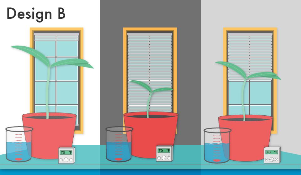 C2M5_Plants-02.png