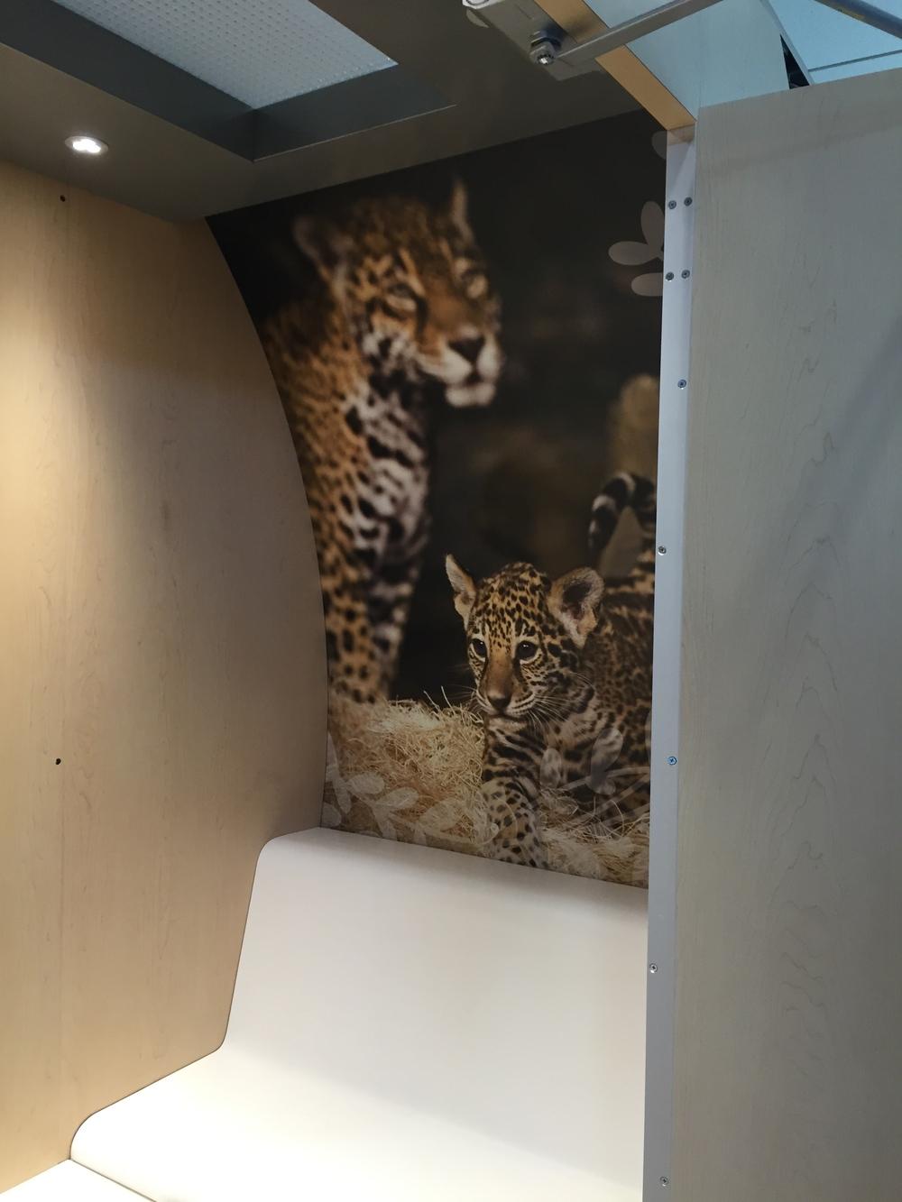 Milwaukee-Zoo-Interior